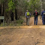 People bushwalking
